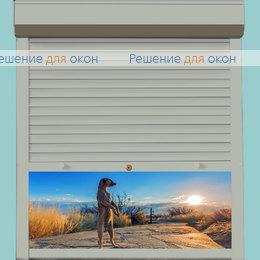 Рольставни для дверей, Профиль PD45/N Серый от производителя жалюзи и рулонных штор РДО